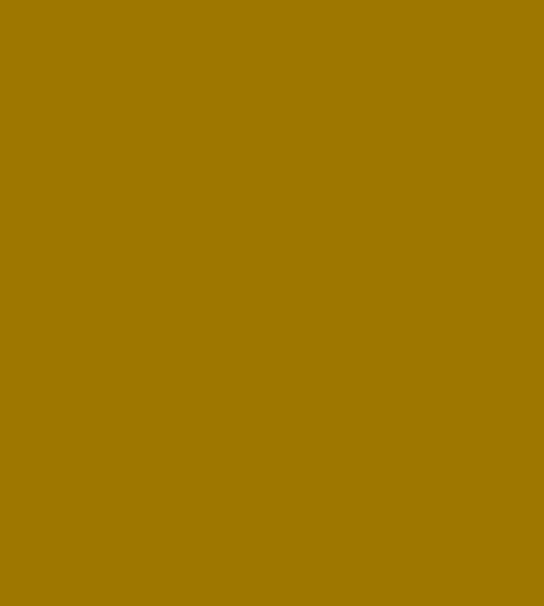 shield_shape_watermark